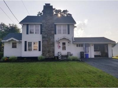 Vestal Single Family Home For Sale: 357 First Avenue