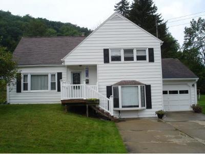 Vestal Single Family Home For Sale: 612 Torrance Ave.