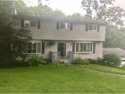 Apalachin Single Family Home For Sale: 10 Woodside Rd