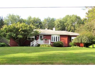 Broome County, Chenango County, Cortland County, Tioga County, Tompkins County Single Family Home For Sale: 468 Cafferty Hill Rd