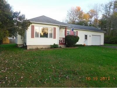 Apalachin Single Family Home For Sale: 91 Shady Hill Drive