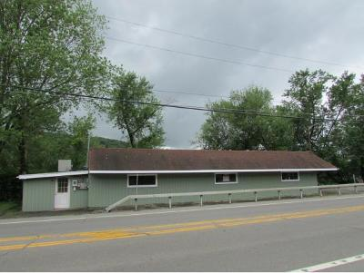 Owego Multi Family Home For Sale: 690 State Route 17c