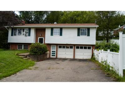 Vestal NY Single Family Home For Sale: $135,000