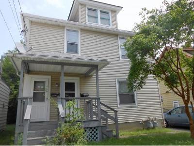 Johnson City Multi Family Home For Sale: 179 Harrison Street