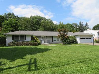 Vestal Single Family Home For Sale: 608 Murray Hill Rd.