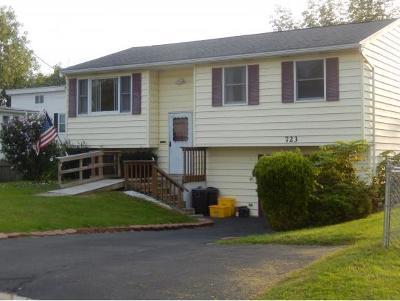 Broome County, Chenango County, Cortland County, Tioga County, Tompkins County Single Family Home For Sale: 723 Milan Avenue