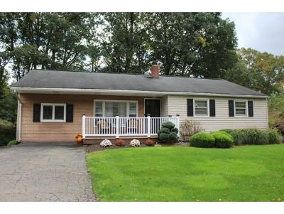 Broome County, Cayuga County, Chenango County, Cortland County, Delaware County, Tioga County, Tompkins County Single Family Home For Sale: 17 Newberry Dr