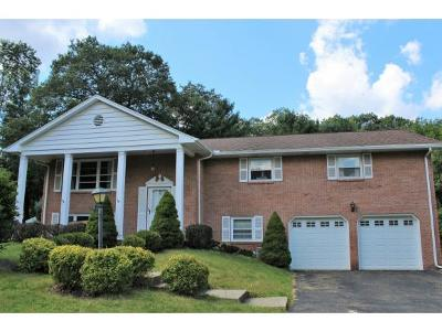 Vestal Single Family Home For Sale: 704 Murray Hill Road