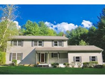 Broome County, Chenango County, Cortland County, Tioga County, Tompkins County Single Family Home For Sale: 116 Rock Rd.