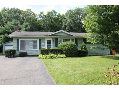 Binghamton Single Family Home For Sale: 94 Felters Rd
