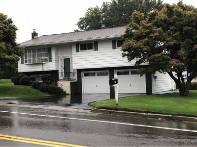 Vestal Single Family Home For Sale: 1200 Murray Hill Road
