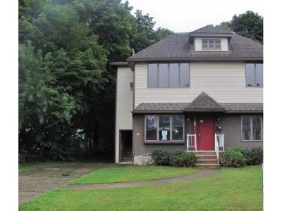 Binghamton Multi Family Home For Sale: 10 Belevue Ave