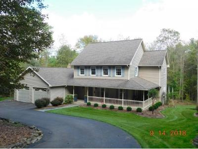 Vestal NY Single Family Home For Sale: $430,000