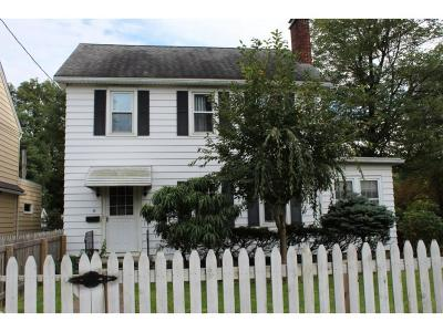 Binghamton Single Family Home For Sale: 69 Highland Ave