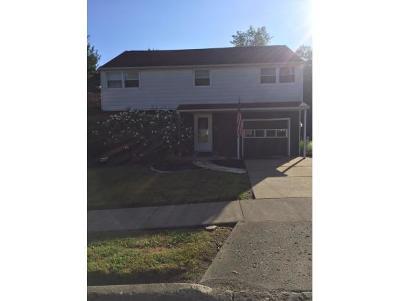 Vestal Single Family Home For Sale: 617 Torrance Avenue