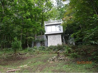 Vestal Single Family Home For Sale: 932 Cherry Lane