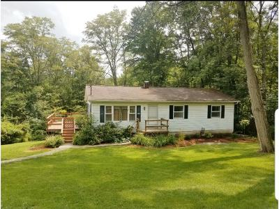Apalachin Single Family Home For Sale: 1275 Chestnut Ridge Rd
