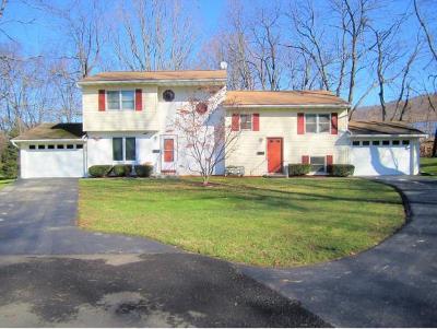 Binghamton Multi Family Home For Sale: 39 Everett Street