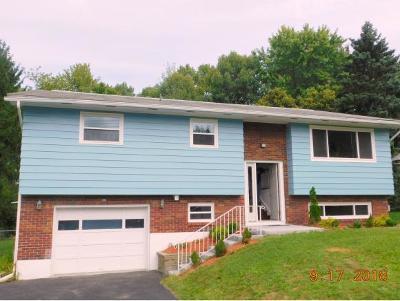 Binghamton Single Family Home For Sale: 4187 Cheryl Drive