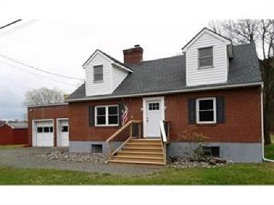 Newark Valley Single Family Home For Sale: 9042 State Route 38
