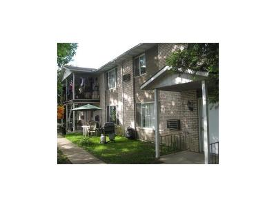 Binghamton Multi Family Home For Sale: 51 Pierce Street
