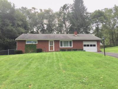 Apalachin Single Family Home For Sale: 5 Waterman Ave