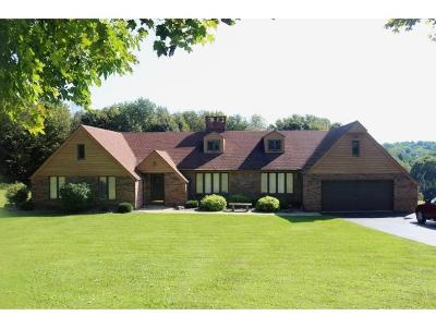 Single Family Home For Sale: 136 Nelson Frank Rd