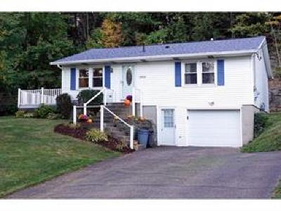 Broome County, Chenango County, Cortland County, Tioga County, Tompkins County Single Family Home For Sale: 2026 Ford Road
