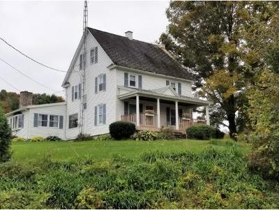 Chenango Forks Single Family Home For Sale: 280 County Road 9