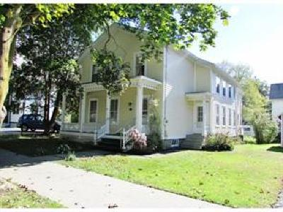 Owego Single Family Home For Sale: 294 Main Street