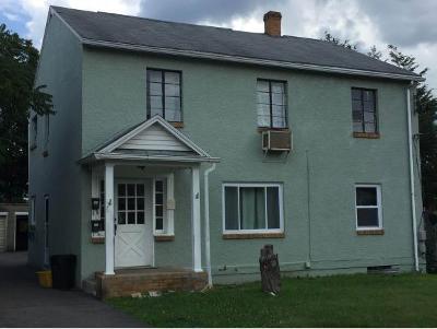 Endicott Multi Family Home For Sale: 305 Delaware Ave