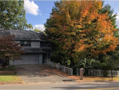 Vestal Single Family Home For Sale: 621 Clubhouse