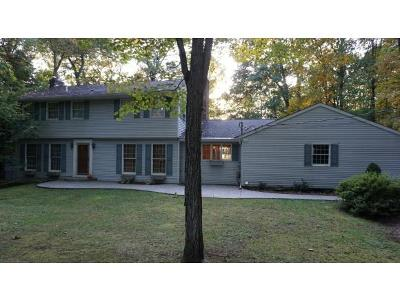 Vestal Single Family Home For Sale: 219 Noyes Road