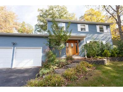 Apalachin Single Family Home For Sale: 45 Oakwood Drive