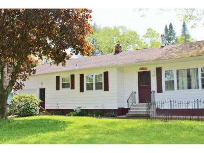 Vestal Single Family Home For Sale: 140 Tharp Street