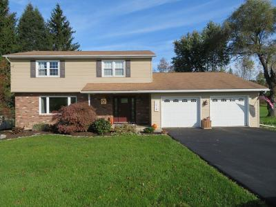 Apalachin Single Family Home For Sale: 1014 Beach Rd.