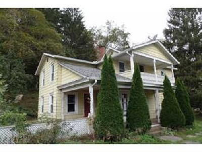 Bradford County Single Family Home For Sale: 31 Mechanic Street