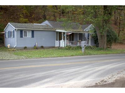 Apalachin Single Family Home For Sale: 3108 Pennsylvania Avenue