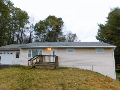 Apalachin Single Family Home For Sale: 242 Beach Road