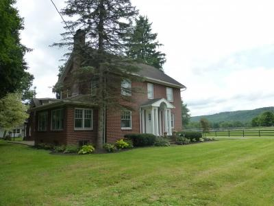 Binghamton Single Family Home For Sale: 1920 Nys Rte 12