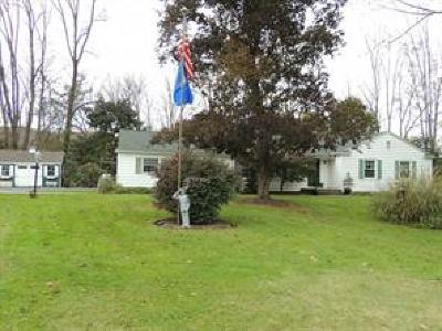 Newark Valley Single Family Home For Sale: 6571 State Route 38