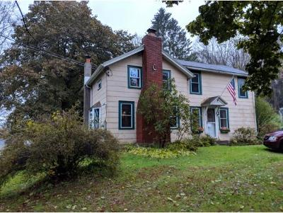 Chenango Forks Single Family Home For Sale: 516 Mix Road