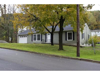 Apalachin Single Family Home For Sale: 17 Highland Drive