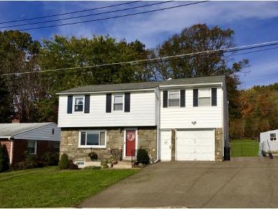 Endicott NY Single Family Home For Sale: $134,900