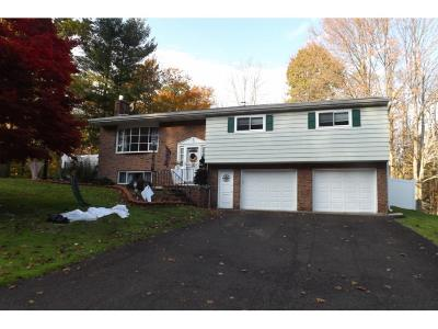 Vestal Single Family Home For Sale: 1408 Campus Drive