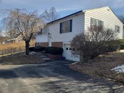 Windsor NY Single Family Home For Sale: $140,000