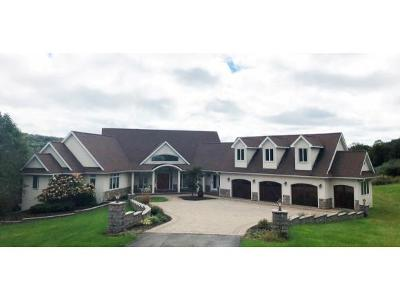 Vestal NY Single Family Home For Sale: $629,000