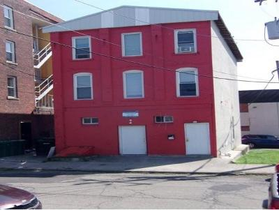 Binghamton Multi Family Home For Sale: 34 Lisle Ave