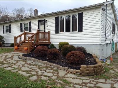 Conklin NY Single Family Home For Sale: $129,000