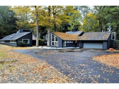 Broome County, Cayuga County, Chenango County, Cortland County, Delaware County, Tioga County, Tompkins County Single Family Home For Sale: 21 Chipmunk Lane